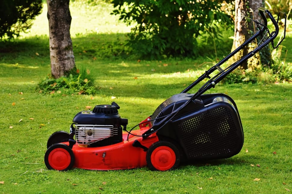 lawn mower for small yards