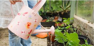 Teach Kids about Gardening