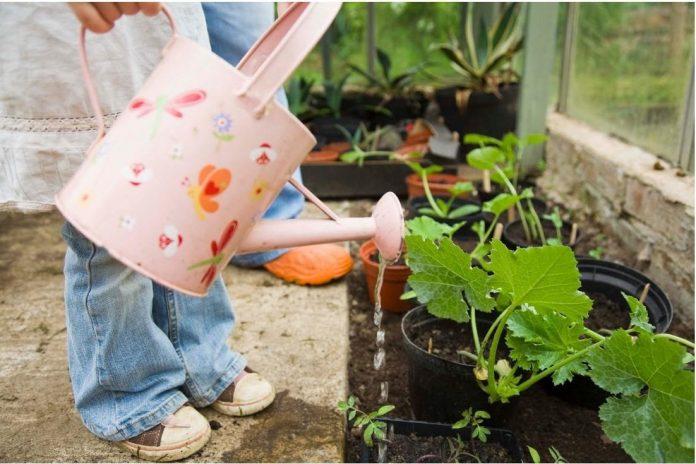 Teach Kids about Gardening