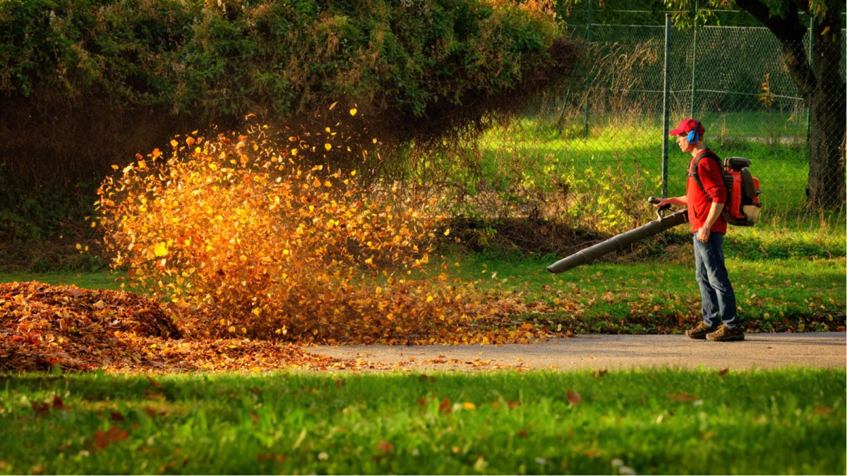 best battery powered leaf blowers