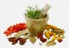 Medicine of Herbal Extract