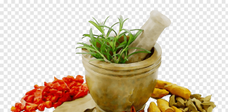 Medicine of Herbal Extract