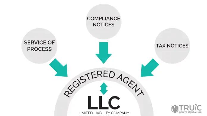an LLC in Georgia: Top business ideas